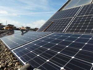 zonnepanelen op een sedumdak met zonnepanelen