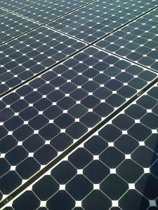 Sedum dakbedekking zonnepaneel