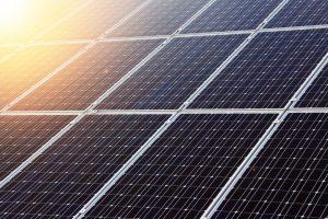 zonnepanelen op een sedumdak