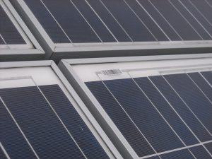 zonnepanelen op een sedumdak solar
